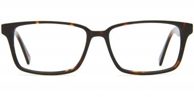 Delancy Glasses Albert