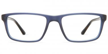 Polo Ralph Lauren Glasses PH2191 54
