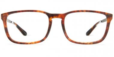 Polo Ralph Lauren Glasses PH2202 55